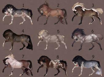 Auction horse adopt 77 [CLOSED]