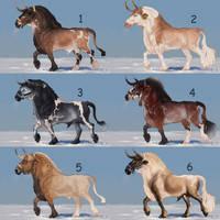 Auction horse adopt 78 [CLOSED]