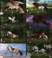 Auction horse adopt 81 [OPEN]