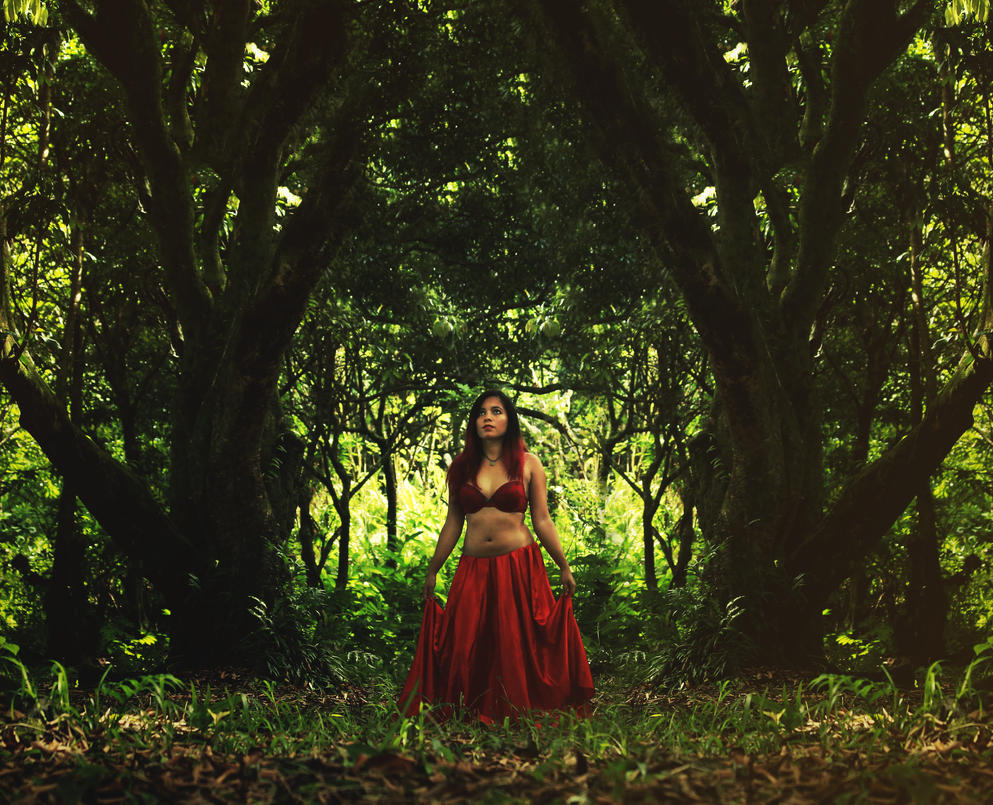 Little red riding woods by CandyLou974