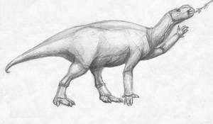 Dinovember Day #3 Muttaburrasaurus
