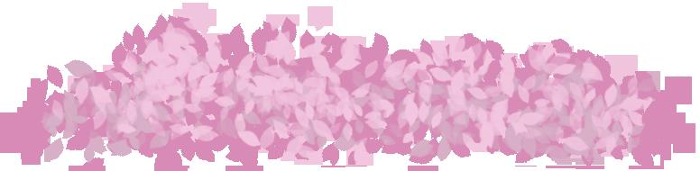 Pile of Sakura Petals mar 7 16 by for-using-muro on DeviantArt