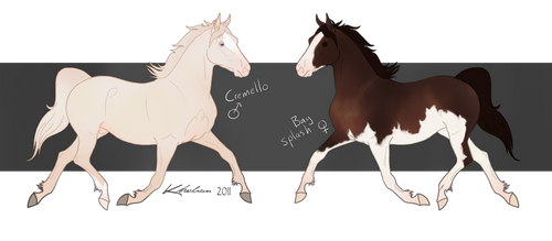Section D Welsh Cob Customs by Cyliph