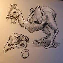 Chickens are strange