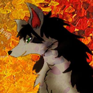 Nicki95's Profile Picture
