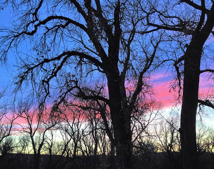 Colorado Sundown - 2 by mudyfrog