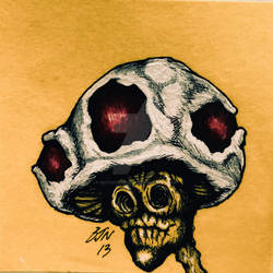 Toad - benji edition