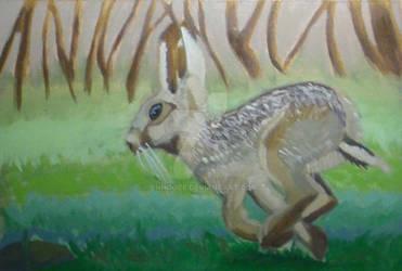 Rabbit (oil study)