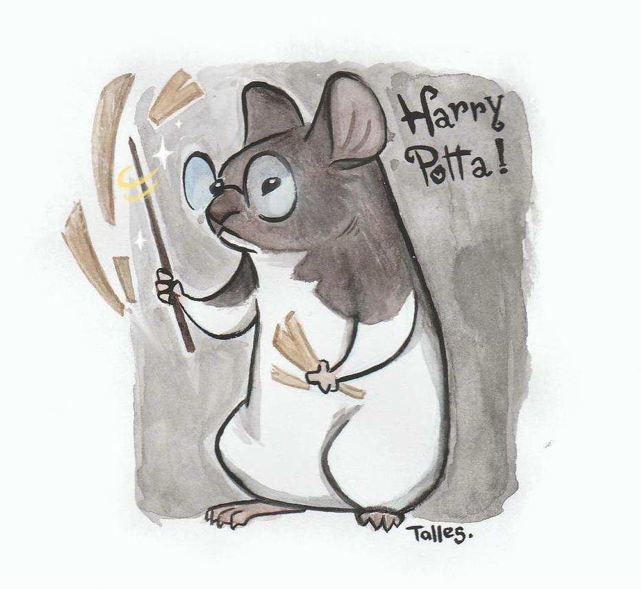 HARRY POTTA! by Kallica