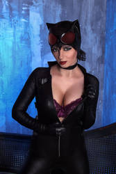 Catwoman's Cleavage by drb7364