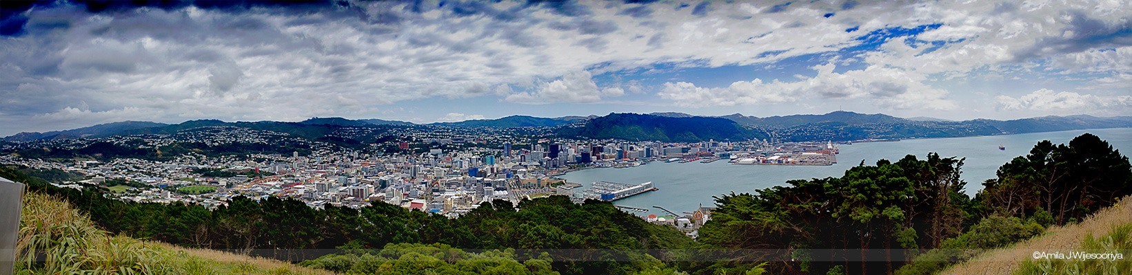 wellington Panorama by godwantsudead