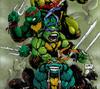 Teenage Mutant Ninja Turtle by ejslayer