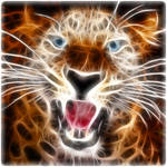 Fractal Leopard2
