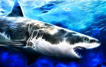 Fractal Shark