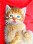 fractal kitty 5