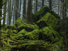 Mossy Rocks by mekheke