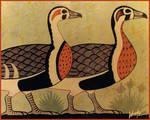 Nile Geese