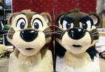 Two Finished Otter Heads