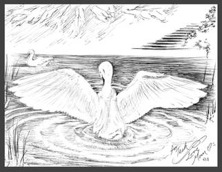 Swan by valkyriechan