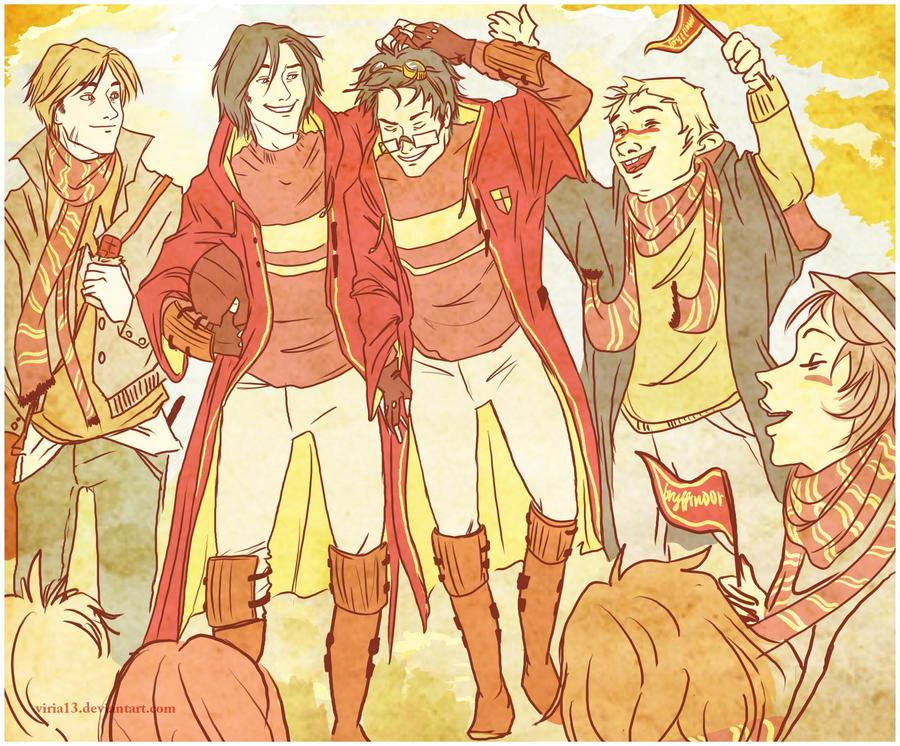 their quidditch hero by viria13