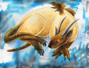 Seal-Point Rat Dragon