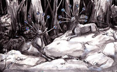 Plate 1 - Beggar Wolves