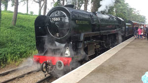 Oliver Cromwell At cheltenham Racecourse