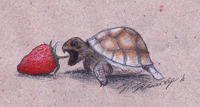 Turtle with strawberries by elizavetta