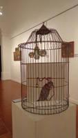 la jaula (la mentira de la libertad)