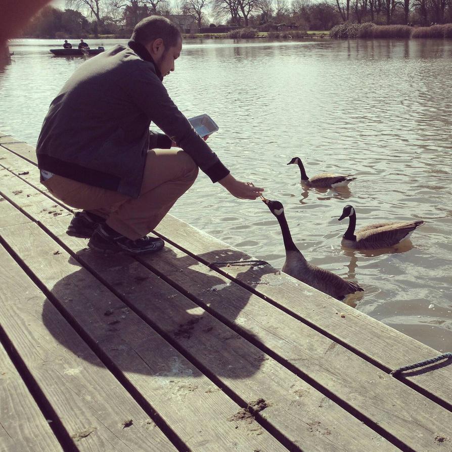 Snack Time with Ducks ... by Saptarshi-Nag
