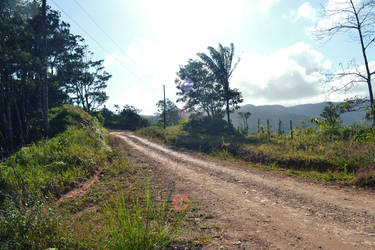 El Camino a Altos de Cerro Azul