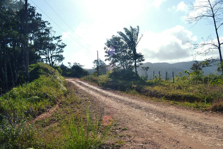 El Camino a Altos de Cerro Azul by crisisnyc