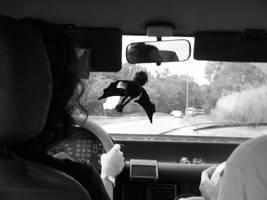 Cynthia and Batty in the car by crisisnyc