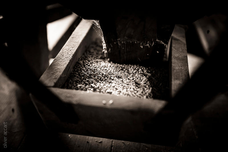 Mill ~ 3 by OlivierAccart