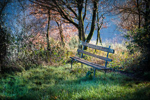 Sit down, have a dream by OlivierAccart