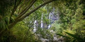 Langevin -2- (Reunion Island)