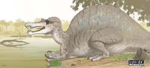 Spinosaurus aegyptiacus by Kronosaurus82