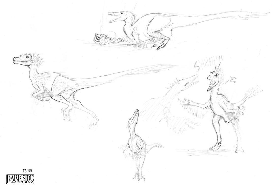 Velociraptor study by