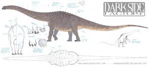 Argentinosaurus Model Sheet 1 by Kronosaurus82