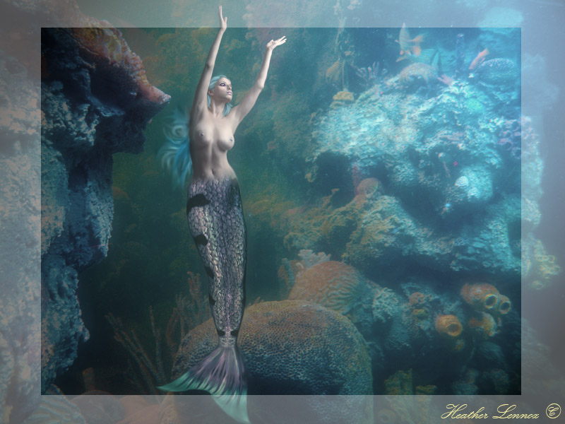 Under the Sea by Senerity