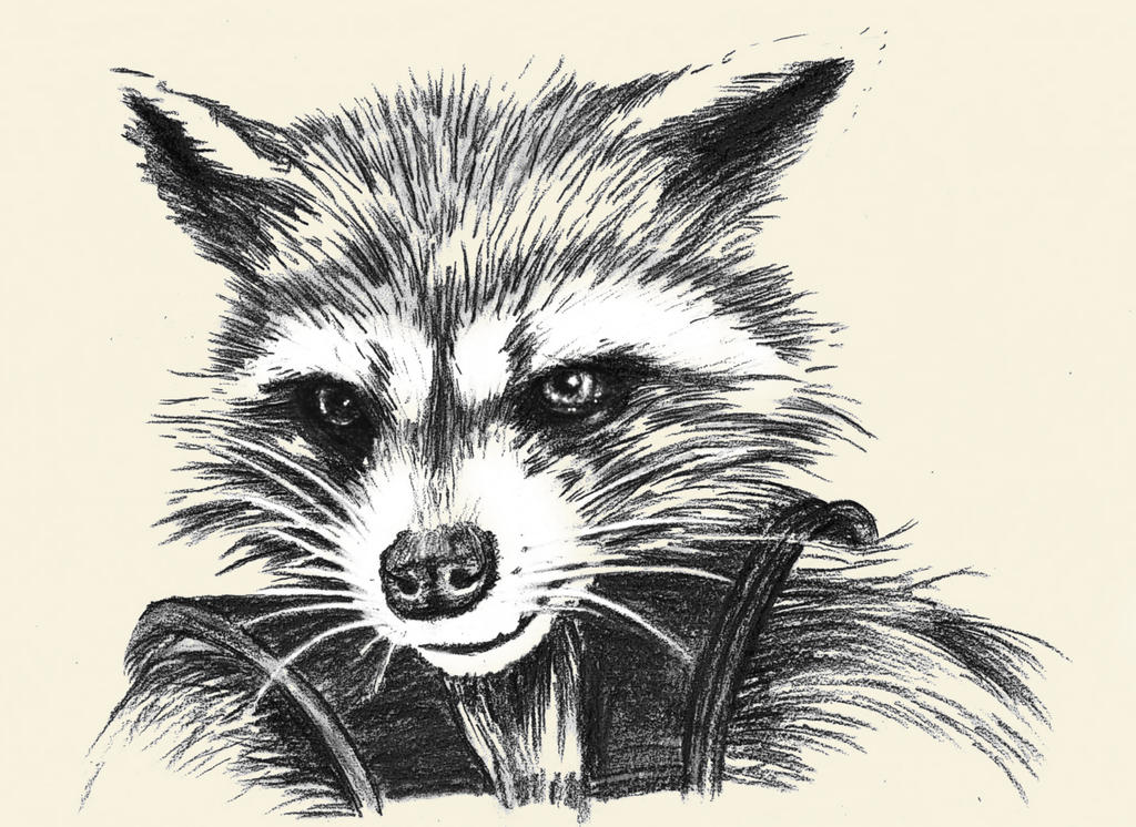 how to draw rocket raccoon face