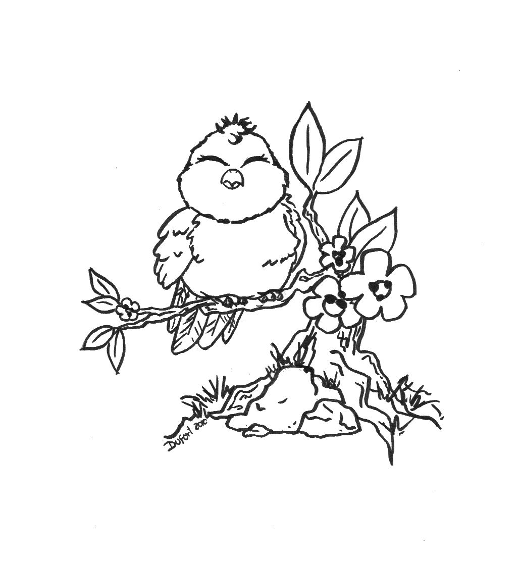 cute flower coloring pages - cute bird flowers branch adult coloring pages pinterest