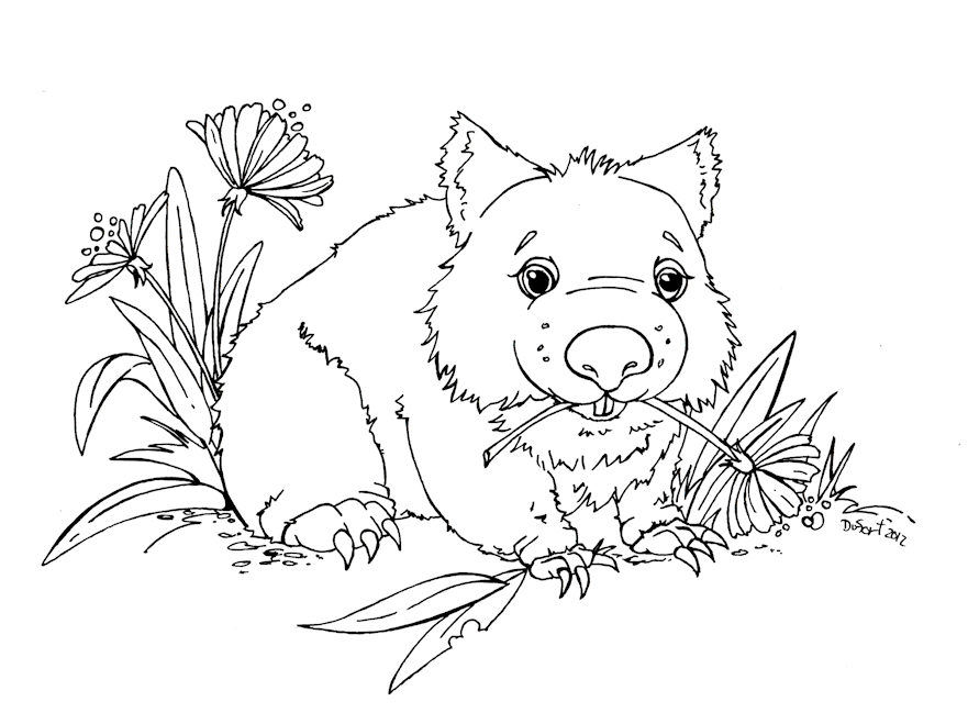 Wombat Coloring Pages Search Results Fun Coloring Pages Wombat Coloring Page
