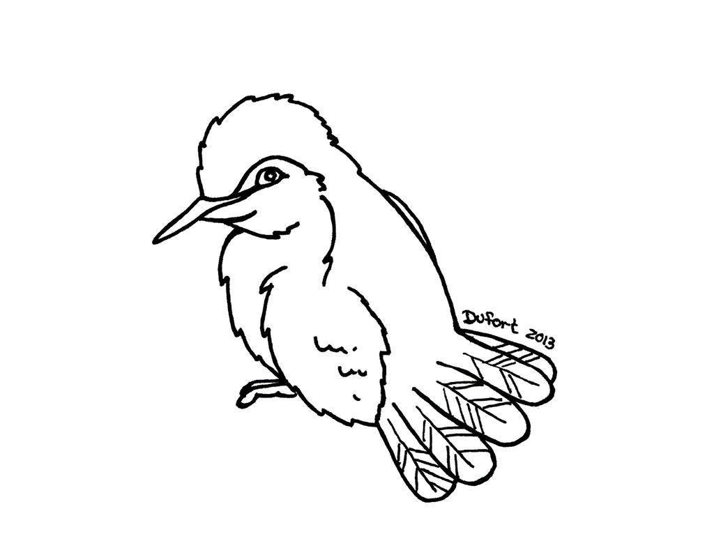 Line Drawing Hummingbird : Hummingbird lineart by jadedragonne on deviantart