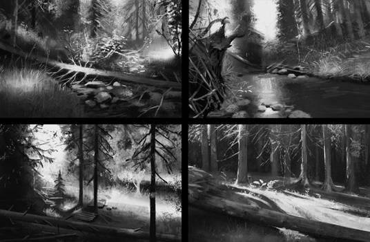Value forest studies