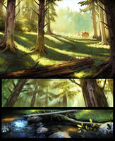 The woods by Detkef