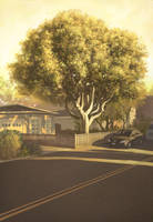 IFX 101: Tree in the Street by AnthonyFoti