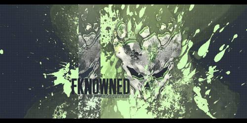 Fkn0wned.net 2 by Kamofudge