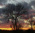 Amazin November Sunset 4