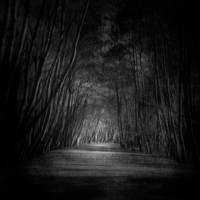 the tragic road